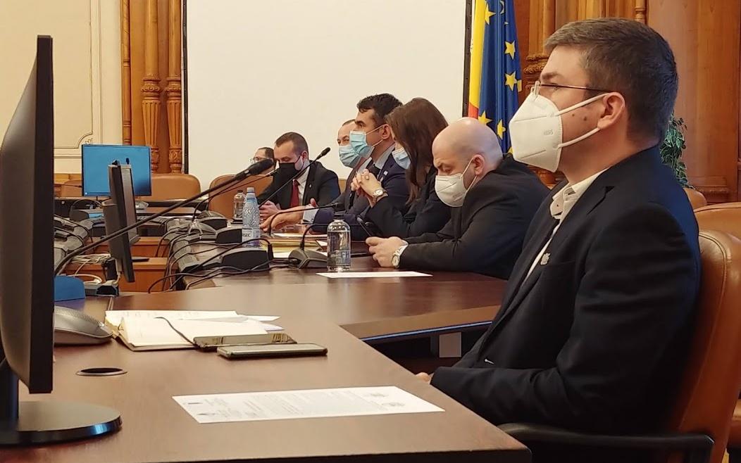 Activitate în Comisia de Muncă, Familie și Protecție Socială