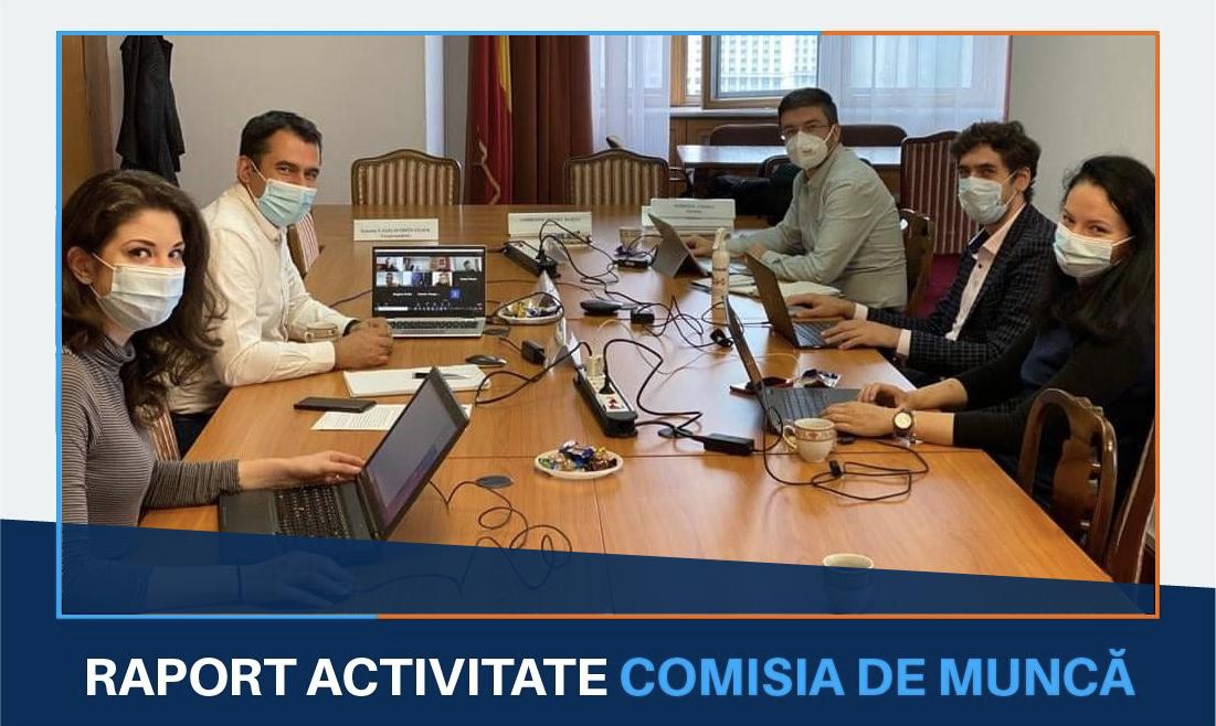Activitatea în Comisia pentru muncă, familie şi protecţie socială